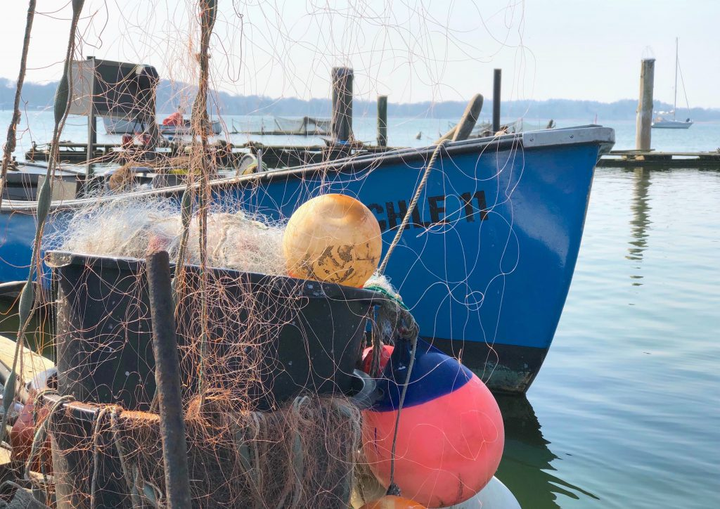 Schleifischer auf em Holm: ein Spaziergang durch die Fischersiedlung Holm bei Schleswig