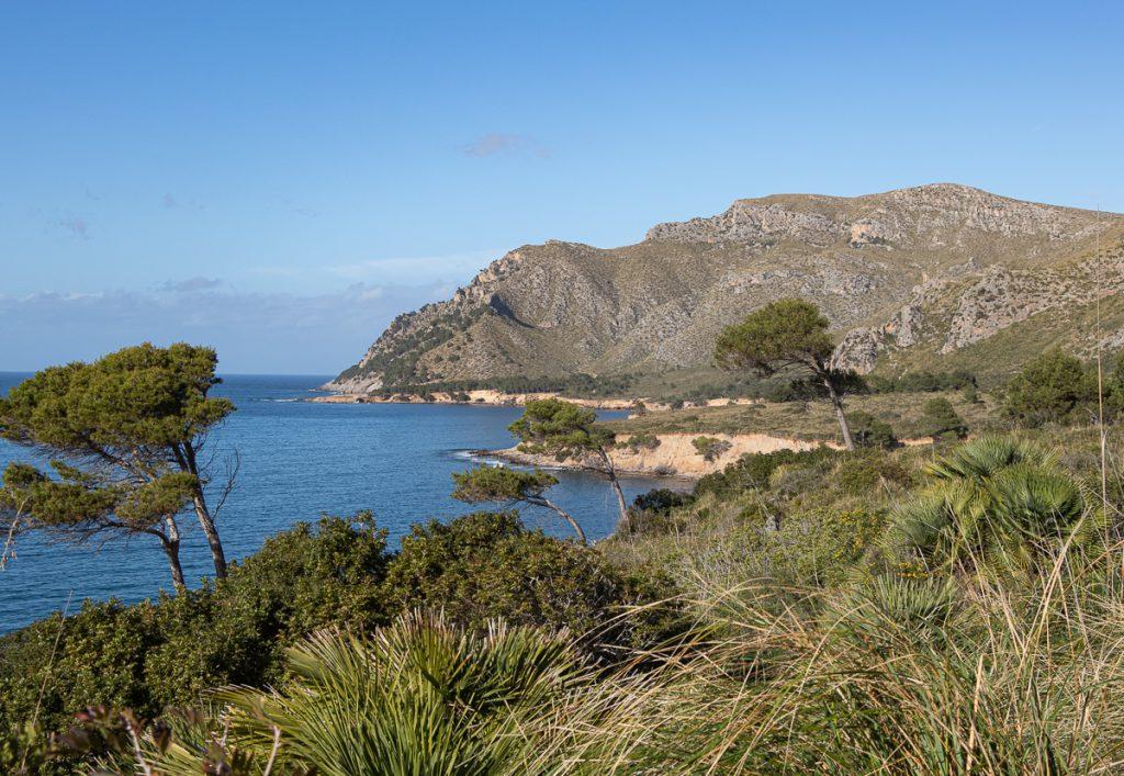 Küstenwanderung im Norden Mallorcas: Blick auf die wunderschöne Bucht Es Caló bei Betlem