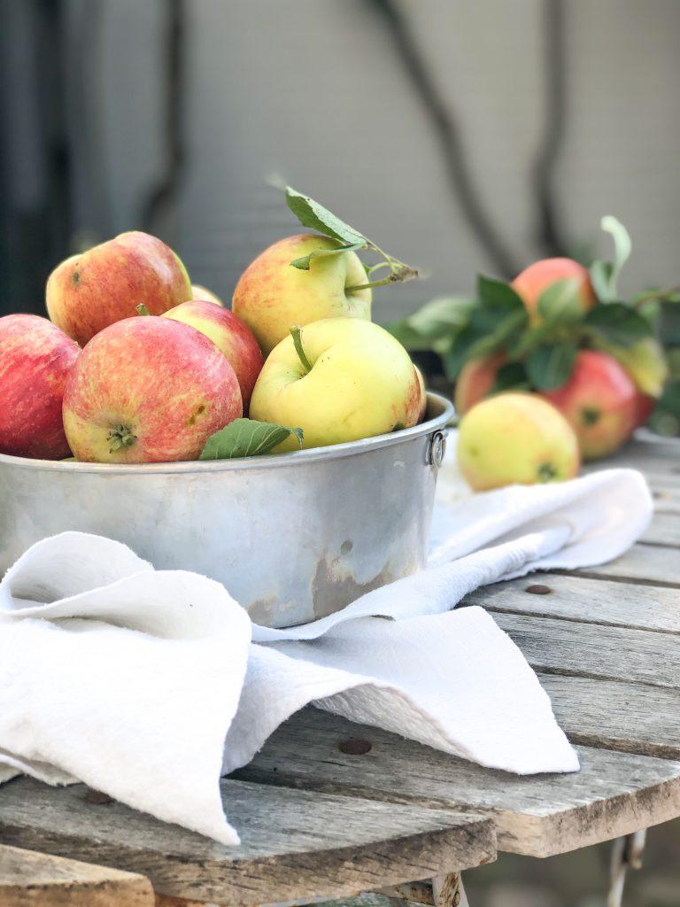 Apfelernte & französischer Apfelkuchen